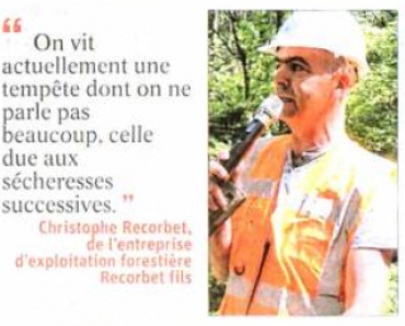 """""""Vis ma vie de bûcheron """" : visite d'un chantier au cœur de la forêt."""