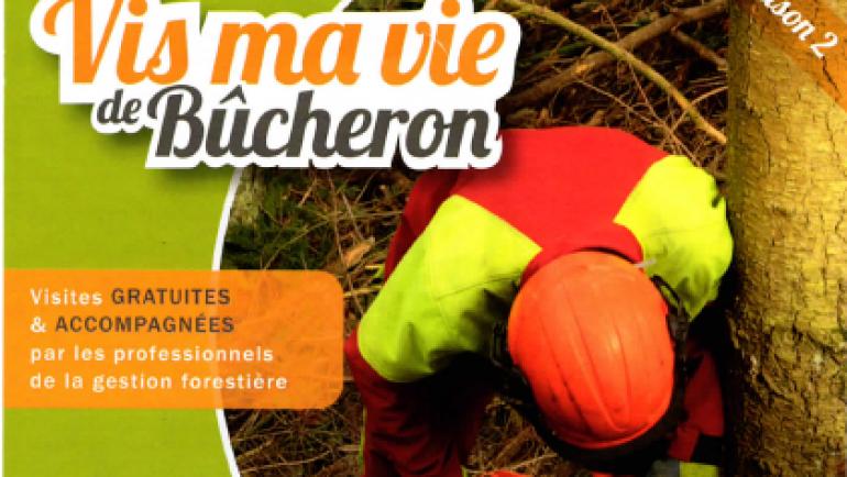 Vis ma vie de Bûcheron – 29/07/2020
